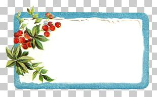 Borders And Frames Christmas Label Frames PNG