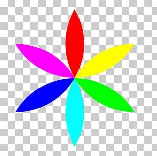Color Flower PNG