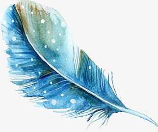 Blue Hand-painted Watercolor Feather PNG