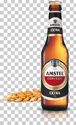 Lager Beer Bottle Cruzcampo Heineken PNG