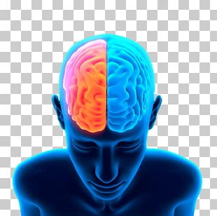 Brain Head PNG