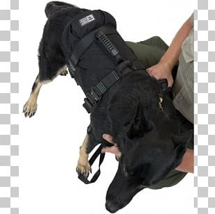 Dog Harness Search And Rescue Dog Police Dog Leash PNG