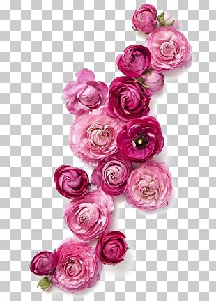 Flower Clothing Fashion Pink PNG