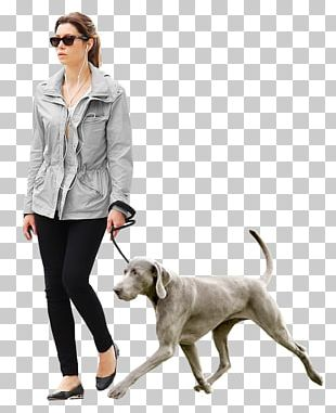 Dog Architecture Architectural Rendering PNG