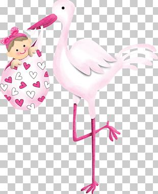 Infant Child Baby Shower Drawing Birth PNG