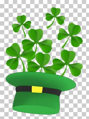 Saint Patricks Day Shamrock Leprechaun PNG