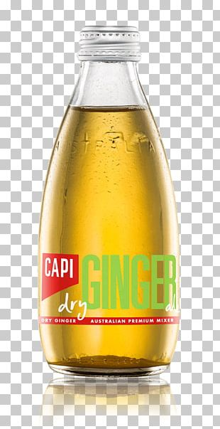 Fizzy Drinks Ginger Ale Tonic Water Ginger Beer Drink Mixer PNG