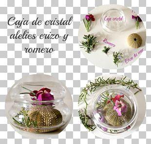 Flower Vase Floral Design Glass Cup PNG