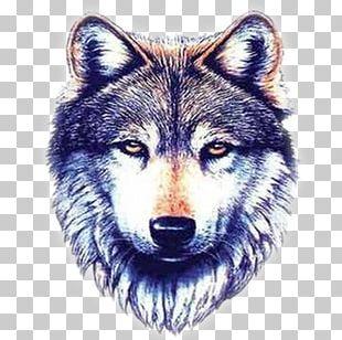 Gray Wolf Sleeve Tattoo Polynesia Nautical Star PNG