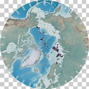 North Magnetic Pole Earth's Magnetic Field Earth's Magnetic