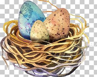 Easter Egg Watercolor Painting PNG
