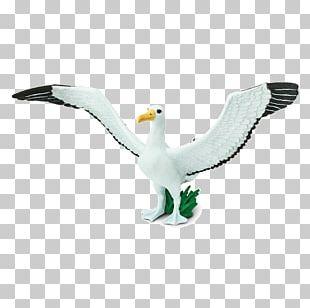 Safari Ltd Bird Animal Figurine Owl Spoonbill PNG