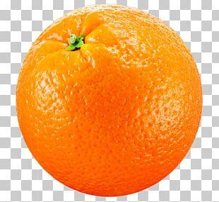 Clementine Joke Tangerine Mandarin Orange PNG