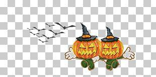 Pumpkin Funny Halloween Cucurbita Maxima Calabaza PNG