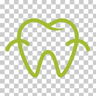 Cosmetic Dentistry Human Tooth PNG