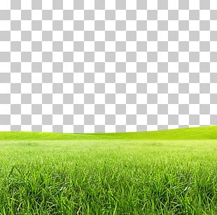 Born To Grow Lawn Icon PNG