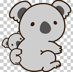 Teddy Bear Baby Koala Giant Panda PNG