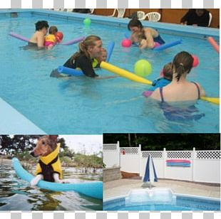 Swimming Pool Leisure Centre Water Park PNG