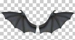 Bat Wing Development Flight PNG
