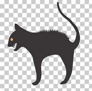 Snout Wildlife Puma Silhouette Small To Medium Sized Cats PNG