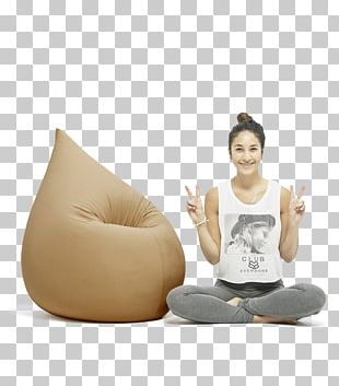 Bean Bag Chairs Furniture .de PNG