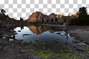 Pond Reflection Stock.xchng Landscape Puddle PNG