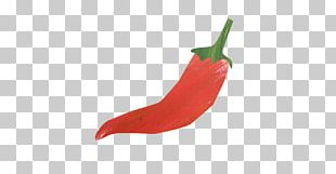 Mexican Cuisine Serrano Pepper Cayenne Pepper Chili Pepper Ingredient PNG