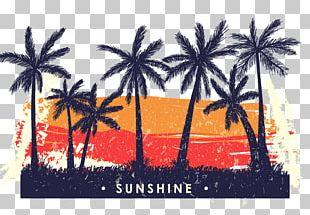 Tree Coconut Illustration PNG
