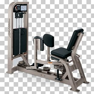 Exercise Equipment Adductor Muscles Of The Hip Leg Curl Thigh PNG