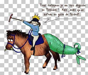 Horse Equestrian Humour Joke Pony PNG
