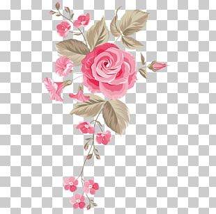 Garden Roses Graphics Floral Design Portable Network Graphics Flower PNG