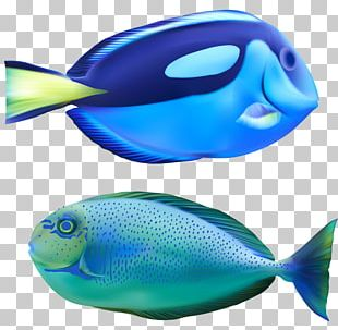 Deep Sea Fish Bony Fishes Marine Biology Deep Sea Creature PNG