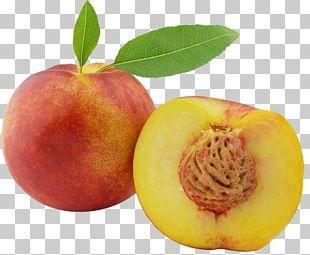 Peach Fruit PNG