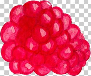 Wild Strawberry Raspberry PNG