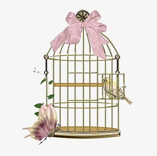 A Bird Cage PNG