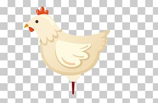 Chicken Rooster PNG