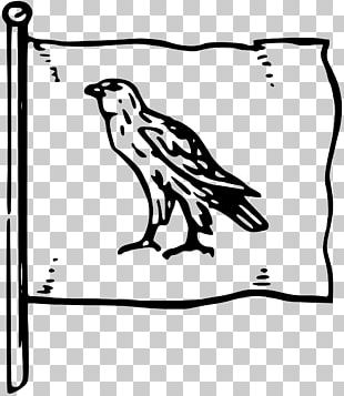 Black And White Drawing Line Art Bird PNG
