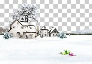 Snow Winter Lidong Photography PNG