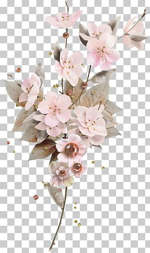 Cut Flowers Floral Design Flower Bouquet Rose PNG