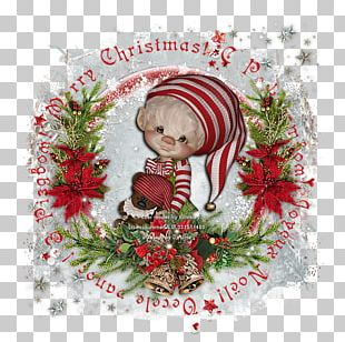 Christmas Ornament Rose Family Greeting & Note Cards Floral Design PNG