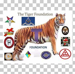 Tiger Royal Arch Masonry Holy Royal Arch Big Cat PNG