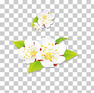 Art Floral Design Happy New Year PNG