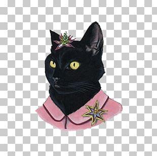 Black Cat Painting Portrait PNG