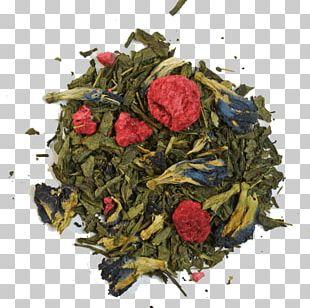 Sencha Oolong Dianhong Da Hong Pao Earl Grey Tea PNG