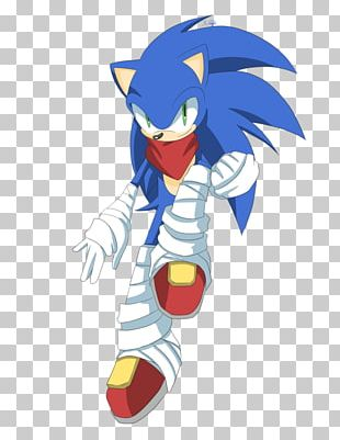 Sonic Boom Sonic The Hedgehog Amy Rose Sonic Heroes Shadow The Hedgehog PNG