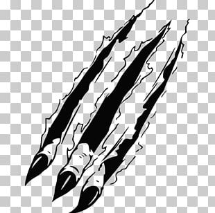 Lion Tattoo Claw PNG