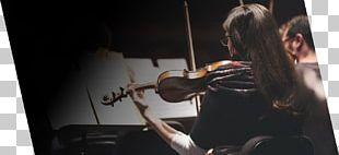 Bowed String Instrument Sound Musical Instruments Musician String Instruments PNG