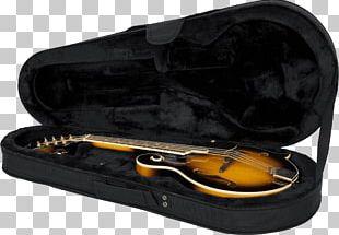 Mandolin Gig Bag Musical Instruments Guitar PNG