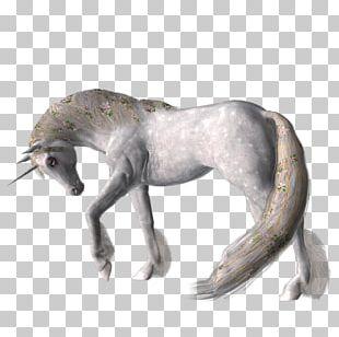 Mustang Dog Figurine Fauna Freikörperkultur PNG