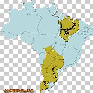 World Map Ecoregion Bacia Do Rio Parnaíba Tuberculosis PNG